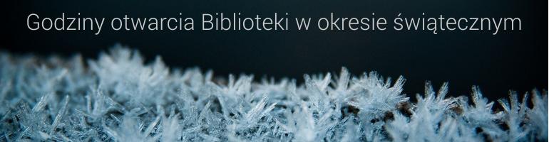 baner-swieta-2017.png